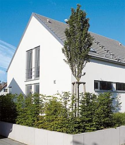 www_086_Einfamilienhaus_Pfaffenweiler_EM_2_03319